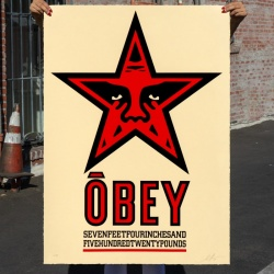 Shepard Fairey - Star...
