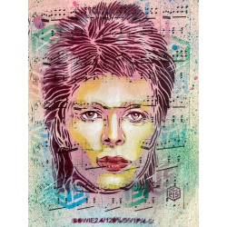 store.joelknafo-art.com C215 - The man who sold the world